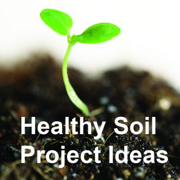 How to apply the Healthy Soil Principles