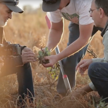 Soil Health in the Southwest