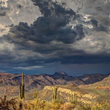 The Perfect Storm on the Navajo Nation
