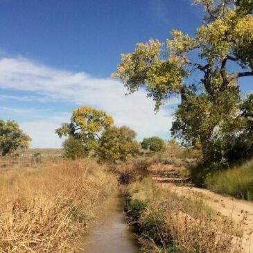 Acequia culture models restorative solutions