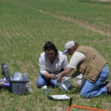 Opportunity: Soil Health Planning for New Mexico Farmers or Ranchers