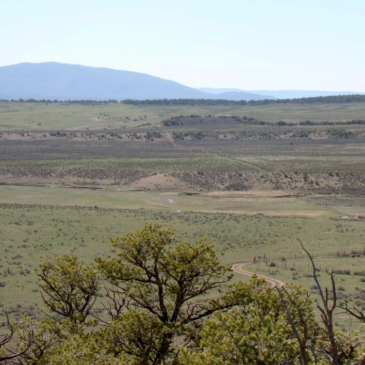 New report examines socio-economic benefits of soil health for New Mexico farms and ranches